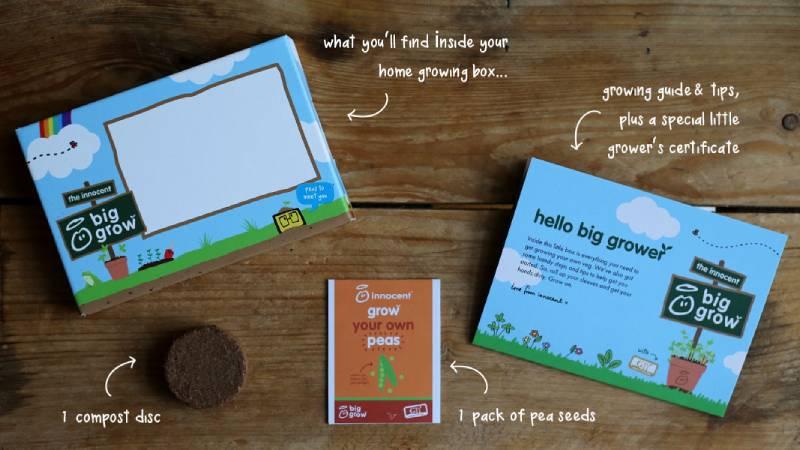 home-growing-kits